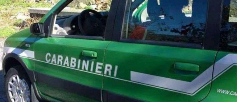 Sarno, vasto incendio in località Tre Valloni: residenti in tensione