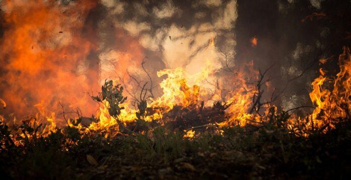 incendio positano baronissi bracigliano