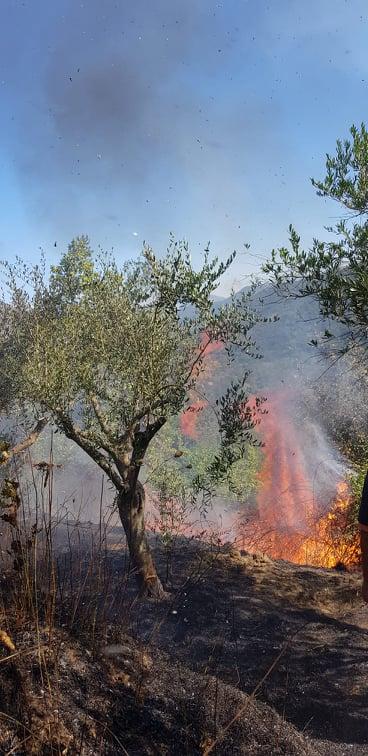 Castel San Giorgio: vasto incendio colpisce zona boschiva, interviene la Croce Azzurra