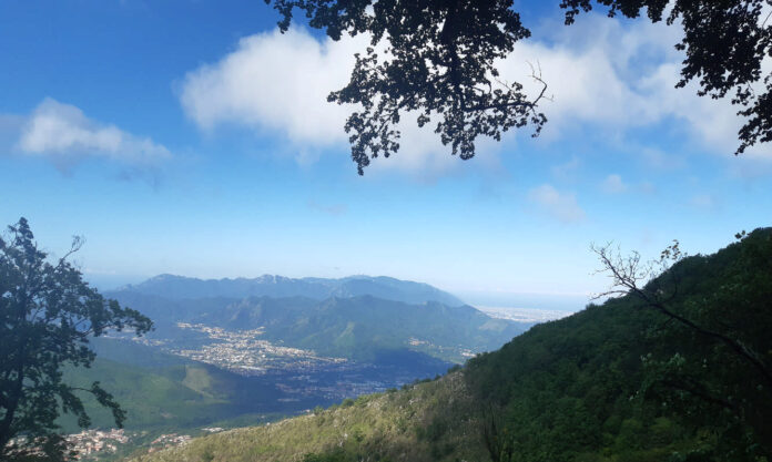 Irno Valley, Fisciano