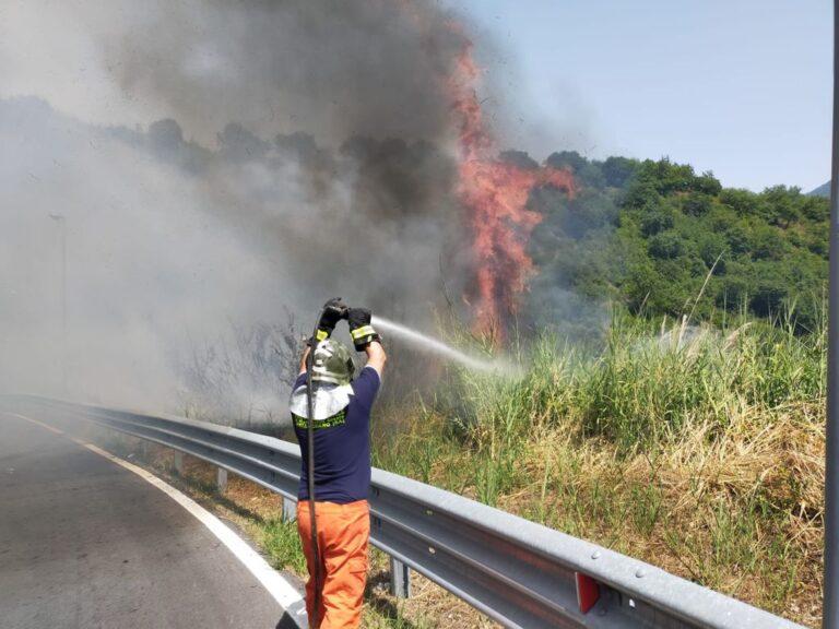 Rogo a Pellezzano: Vigili del Fuoco e volontari SMA Campania evitano il peggio