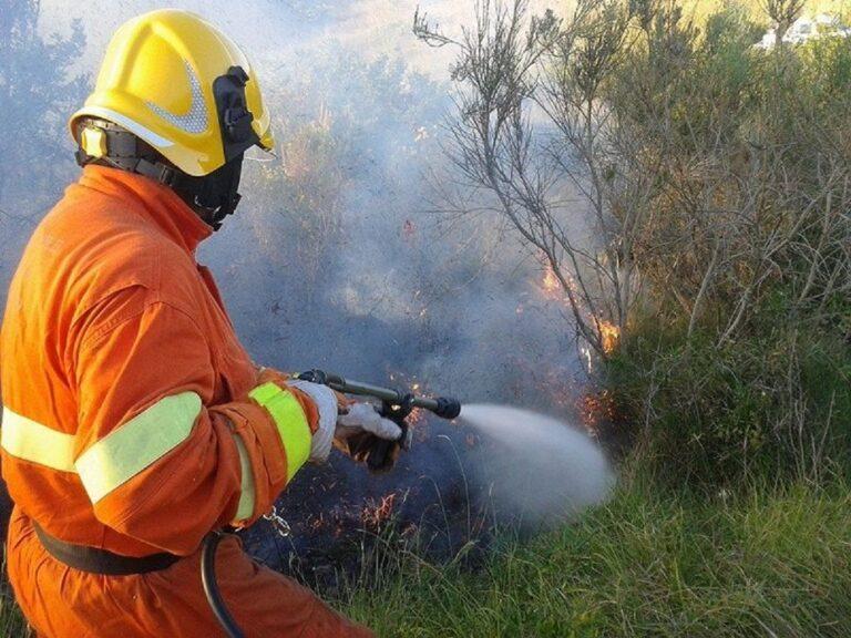 Incendio ad Ascea: evacuate alcune abitazioni